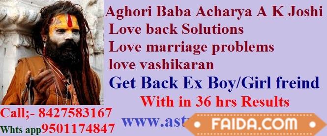 Best Astrologer +918427583167 In India